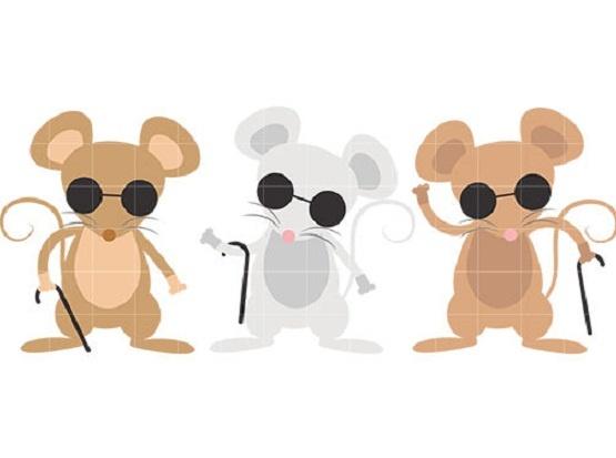 The Story of Three Mice